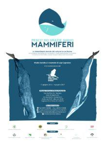 pesci non grazie mammiferi