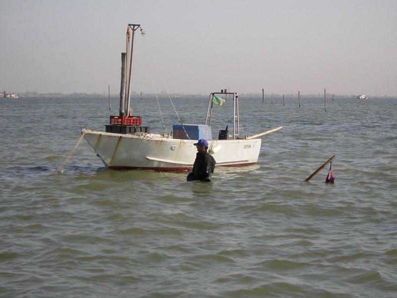 Comitato di Settore delle cooperative agroalimentari e della pesca di Legacoop Estense, il 26 luglio a Goro
