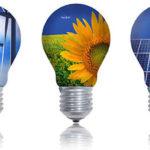 """""""Green Jobs: lavorare nel mondo dell'economia sostenibile"""": anche l'Alleanza delle Cooperative di Ferrara nel programma dell'incontro informativo del prossimo 16 novembre"""