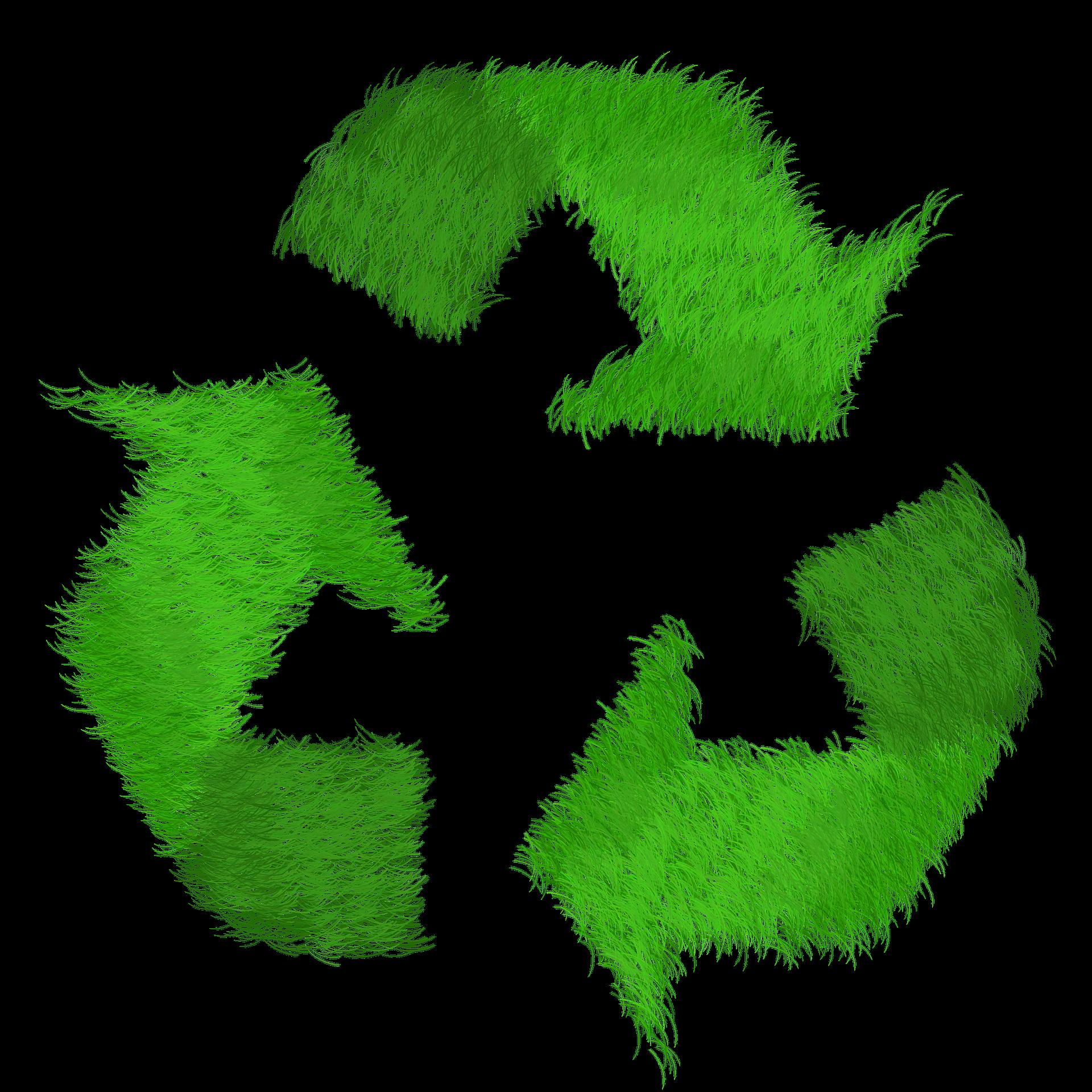 Modello Unico di Dichiarazione ambientale: il 12 marzo in Camera di commercio a Ferrara un seminario gratuito