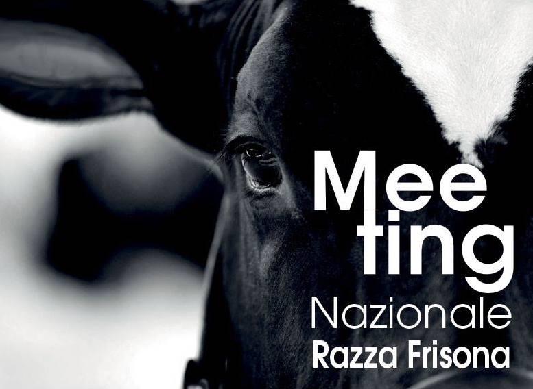 Meeting Nazionale Razza Frisona: il 19 maggio a Reggio Emilia Progeo e CILA ci mostrano come viene prodotto il Parmigiano Reggiano