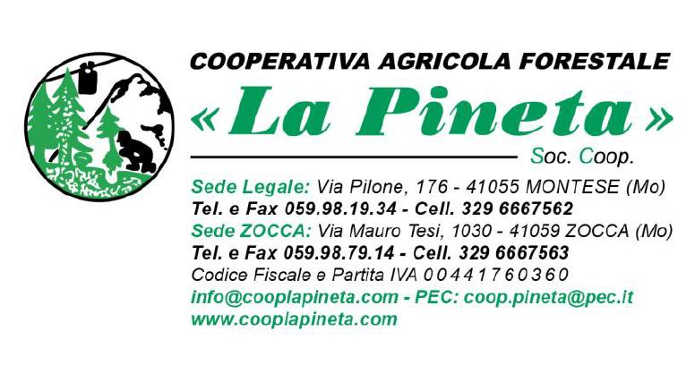 """Cooperativa Agricola Forestale """"La Pineta"""": comunicazione ai sensi del Decreto Legge 34/2019"""