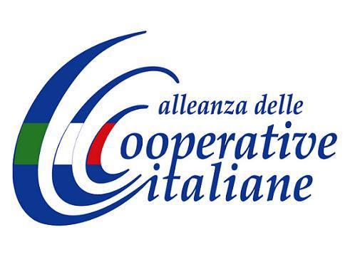 PNRR: Alleanza delle Cooperative incontra il Ministro delle Infrastrutture e della Mobilità Sostenibili